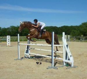 section-sport-etude-equestre-nantes-blain-ecurie-pascal-leroy-485692_4068461994986_1885575847_n-min