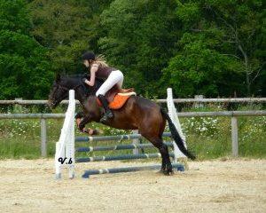 section-sport-etude-equestre-nantes-blain-ecurie-pascal-leroy-560655_4068274790306_1844648159_n-min