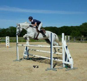 section-sport-etude-equestre-nantes-blain-ecurie-pascal-leroy-576989_4068465955085_887773242_n-min