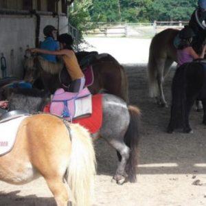 section-sport-etude-equestre-nantes-blain-ecurie-pascal-leroy-bapteme-poneys1-min