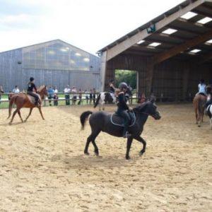 section-sport-etude-equestre-nantes-blain-ecurie-pascal-leroy-caroussel-min