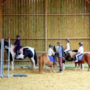 section-sport-etude-equestre-nantes-blain-ecurie-pascal-leroy-club21-min