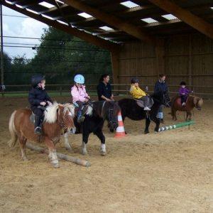 section-sport-etude-equestre-nantes-blain-ecurie-pascal-leroy-cours-baby-poney-2-min