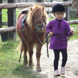 section-sport-etude-equestre-nantes-blain-ecurie-pascal-leroy-cours-baby-poney-3-min