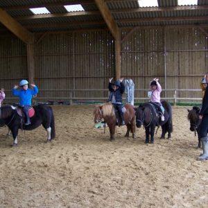 section-sport-etude-equestre-nantes-blain-ecurie-pascal-leroy-cours-baby-poney-4-800x516-min