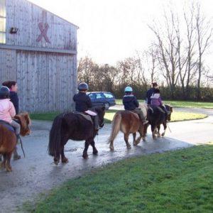 section-sport-etude-equestre-nantes-blain-ecurie-pascal-leroy-cours-baby-poney-7-800x512-min