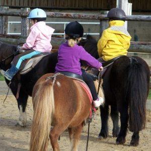 section-sport-etude-equestre-nantes-blain-ecurie-pascal-leroy-cours-baby-poney-min