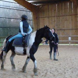 section-sport-etude-equestre-nantes-blain-ecurie-pascal-leroy-cours-de-voltige-min