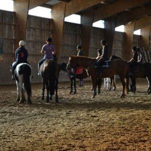 section-sport-etude-equestre-nantes-blain-ecurie-pascal-leroy-cours-min