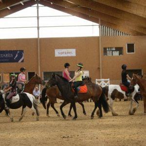 section-sport-etude-equestre-nantes-blain-ecurie-pascal-leroy-dsc06862-min