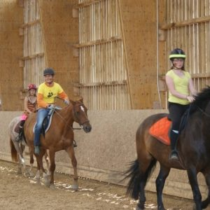 section-sport-etude-equestre-nantes-blain-ecurie-pascal-leroy-dsc06866-min