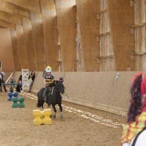 section-sport-etude-equestre-nantes-blain-ecurie-pascal-leroy-dsc06881-min
