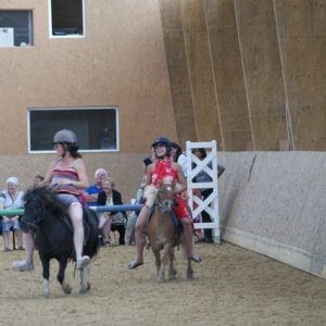 section-sport-etude-equestre-nantes-blain-ecurie-pascal-leroy-dsc06926-min