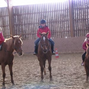 section-sport-etude-equestre-nantes-blain-ecurie-pascal-leroy-img_3365-min