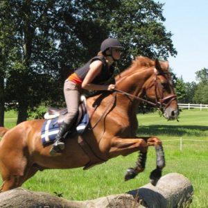 section-sport-etude-equestre-nantes-blain-ecurie-pascal-leroy-img_7976-min