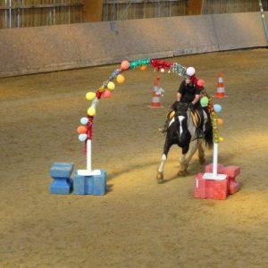 section-sport-etude-equestre-nantes-blain-ecurie-pascal-leroy-p1030504-min