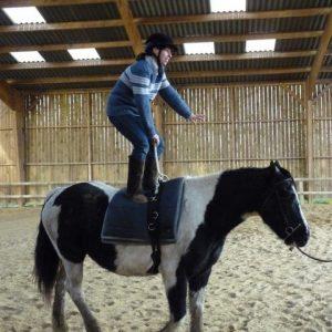 section-sport-etude-equestre-nantes-blain-ecurie-pascal-leroy-voltige-2-min