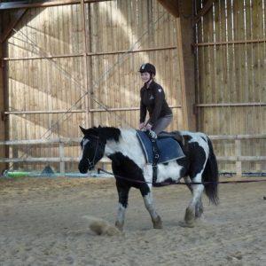 section-sport-etude-equestre-nantes-blain-ecurie-pascal-leroy-voltige-3-min