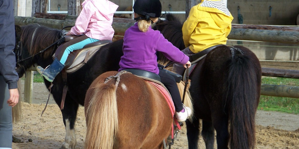 Cours-baby-poney