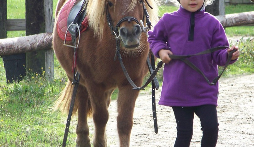 Cours-baby-poney-3
