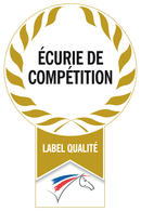 Ecurie-de-competition_listitem_no_crop