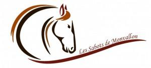 Logo-asso-1-800x359