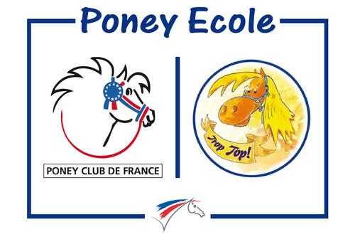 cartouche_poney_ecole_246122-95